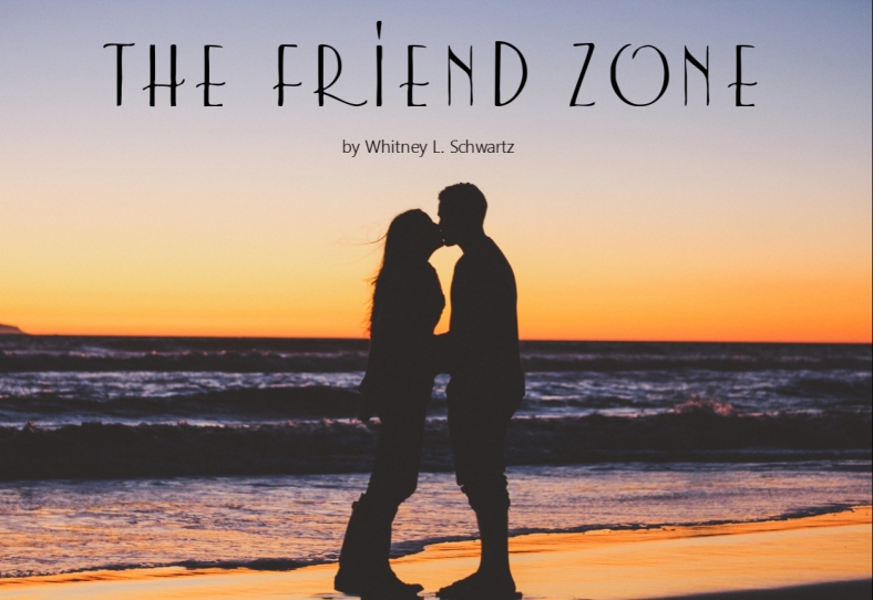 the friend zone graphic